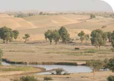 wüste und wasser